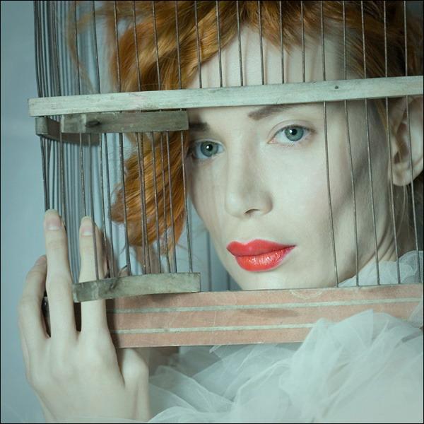 A_bird_in_a_cage-photographer_Ulf_Hedhinn