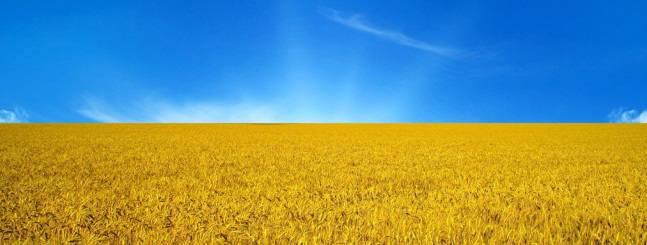 Ukraine-nebo-pole