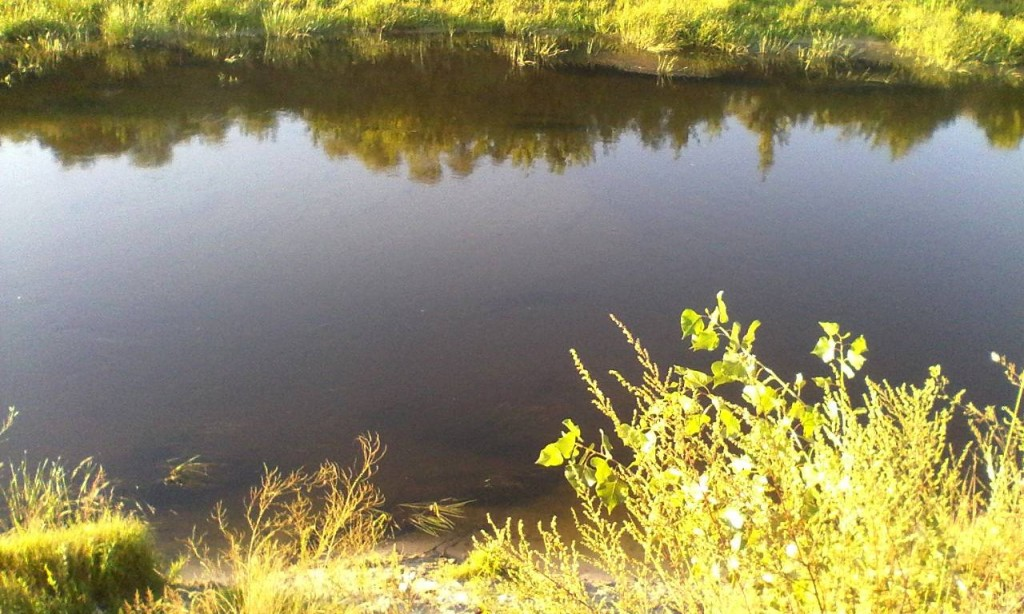 Reka Snov 1