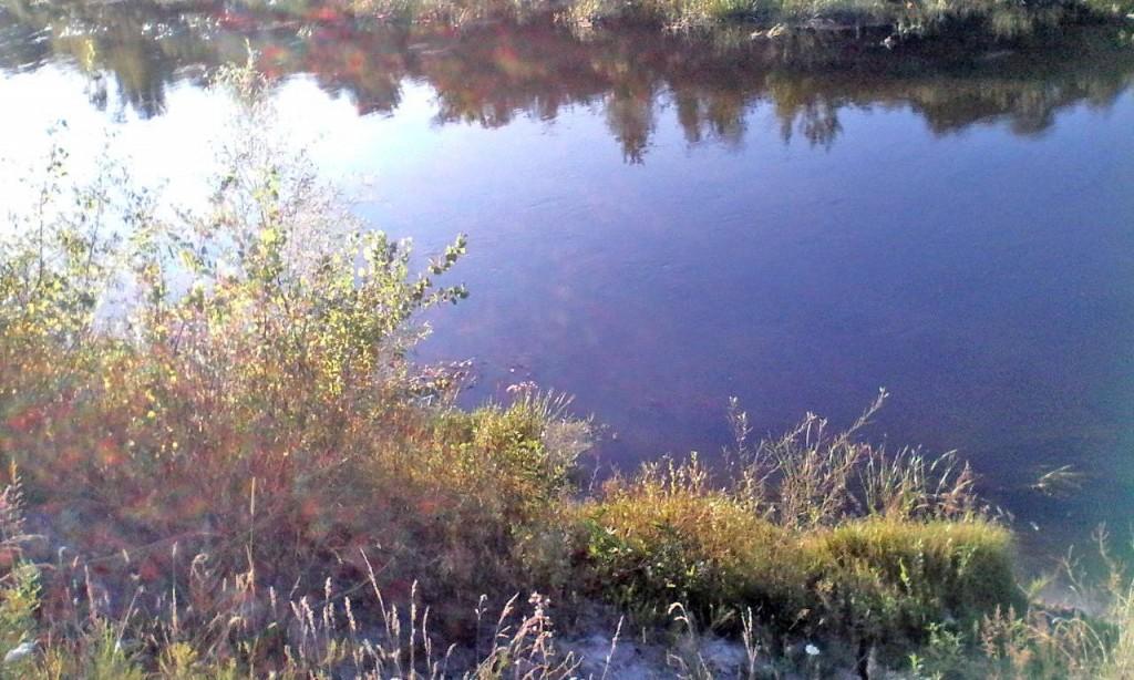 Reka Snov 2
