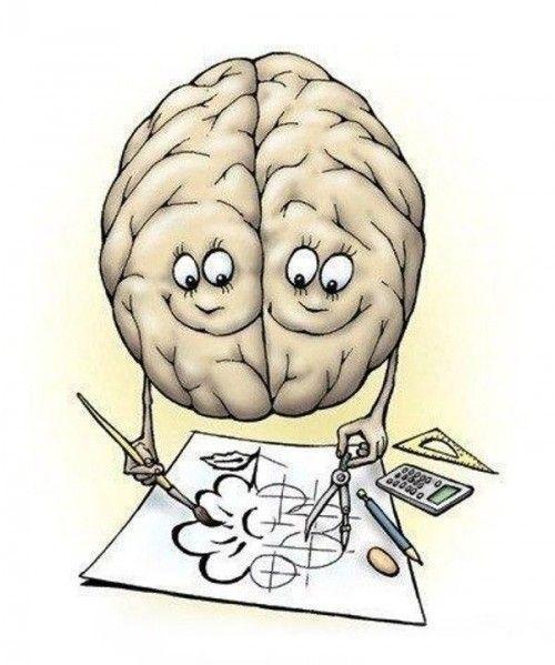 Polushariya golovnogo mozga