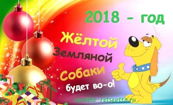 2018 - god zemlyanoy sobaki