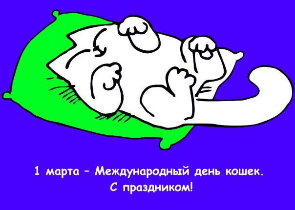 Кот Саймона 5