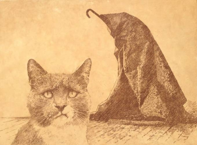 Музейный кот, Владимир Колесников
