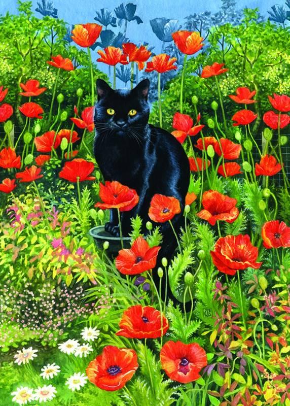 Чёрный кот, Крисси Снеллинг