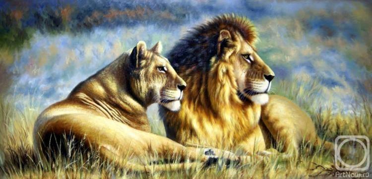 Лев и львица, Августо Бруно